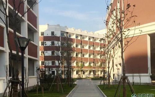 上海闵行区上海二中绿化项目